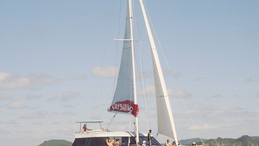 best day sail in the bay of islands