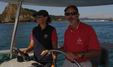 local family business dolphin watching in the bay of islands